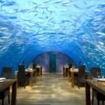 马尔代夫ithaa水下餐厅