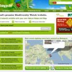 55个绿色系的网页设计