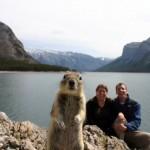 40张惊人的动物摄影照片