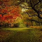 12张绝美的风景摄影照片