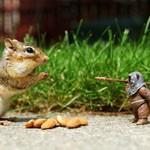 30张创意有趣的玩具摄影照片