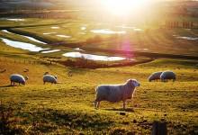 48张美国乡村摄影照片