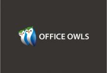 24个以猫头鹰为主题的创意Logo设计