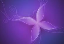 28张梦幻美丽的蝴蝶桌面壁纸