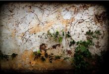 15张免费的高品质脏墙背景素材