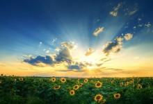 30张美丽的天空摄影照片