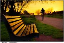 37张漂亮的公园长椅摄影照片