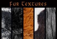 35组免费的高品质毛发纹理背景下载