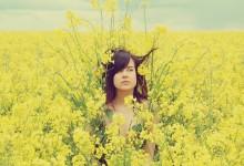 20张美丽的花景摄影照片