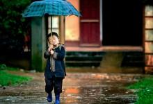30张创意的雨中摄影照片