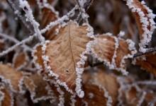 30张美丽的冬季雪景桌面壁纸