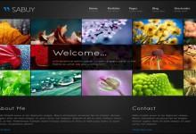 30个全屏照片背景的网站设计