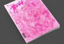 60个创意的杂志封面设计