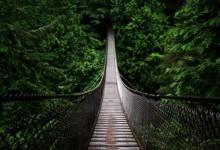 40张漂亮迷人的桥梁摄影照片
