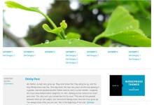 20个免费的WordPress主题下载