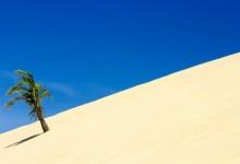 17张唯美的沙石摄影照片
