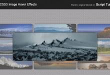12个免费下载的CSS3图片特效效果