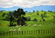 22张美丽的新西兰风景摄影照片