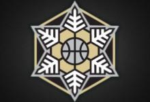 16个以雪花为主题的创意Logo设计