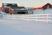35张宁静的冬天雪景摄影照片