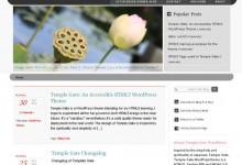 35个免费的HTML5 WordPress主题下载
