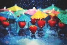 25张漂亮的雨中摄影照片