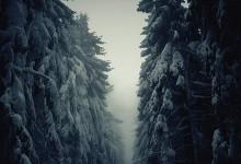 20张极美的冬天摄影照片欣赏