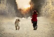 20张震撼的冬天摄影照片