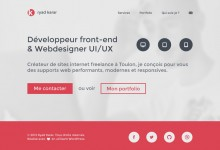 20个优秀的扁平化网站设计作品
