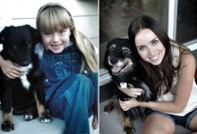 22张动物现在与小时候对比摄影照片
