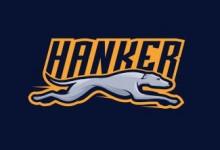 12个以灰猎犬为主题的创意Logo设计