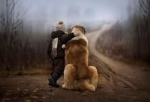 22张可爱的小孩子和狗狗摄影照片