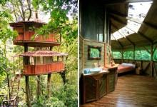 12个创意的树屋设计作品案例