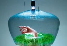 24个灵感来自自然的创意设计想法