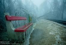 19张冰封布达佩斯小镇的摄影照片
