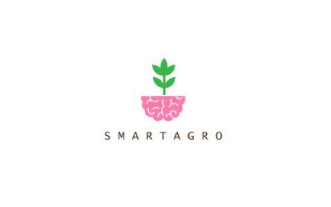 20个以大脑为主题的创意Logo设计