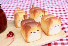 温暖的热烤面包猫